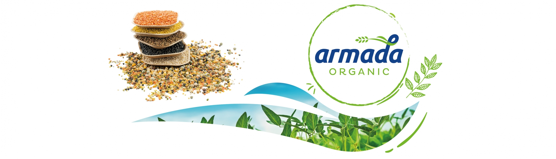 Accordance with international organic agriculture regulations